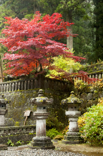 Autumn colours at Futaran Shrine, Nikko